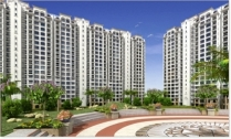 Dlf Garden City